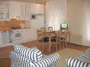 Modern 2-room apartment for rent at 16, Dvortsovaya Embankment